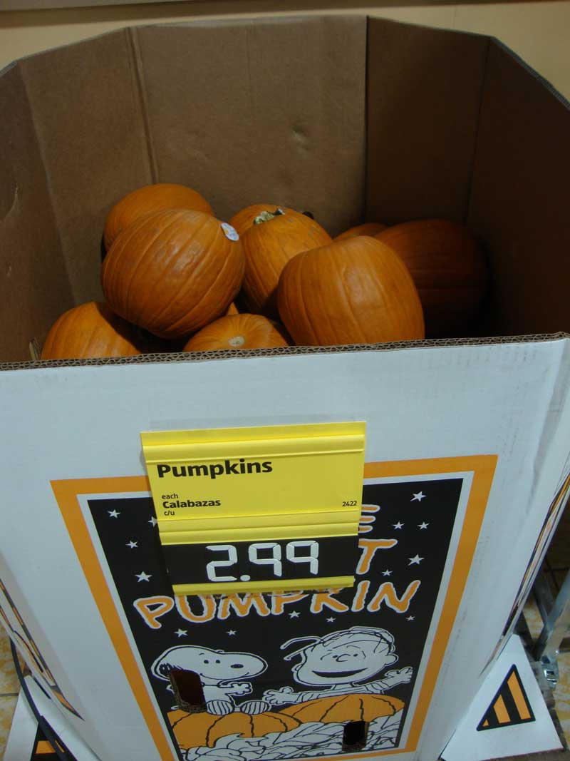 Picture of My Day – 42 – Pumpkins at Aldi