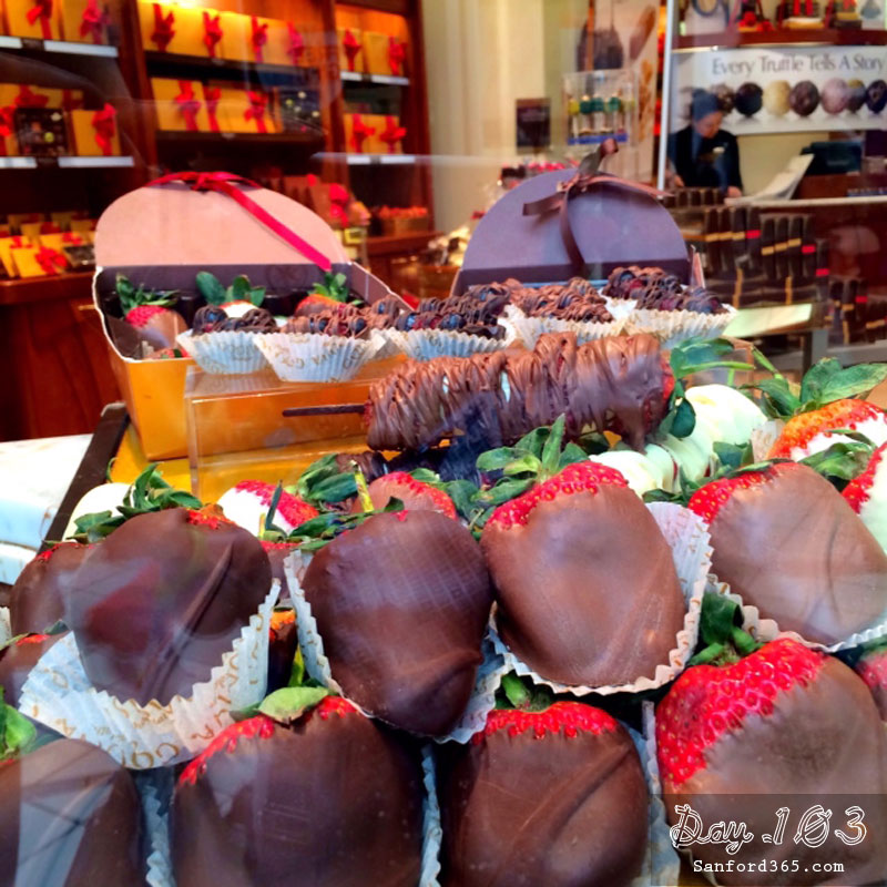 Day 103 – Chocolate Strawberries of Godiva