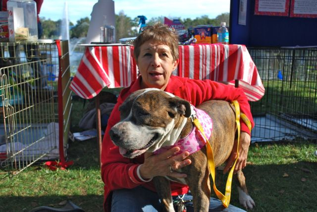 Photo by www.orlandocanineconnections.com