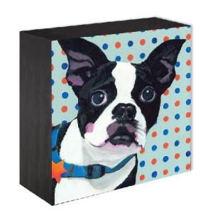 Dlynn Roll Pet Portrait Prize for Sanford Selfies