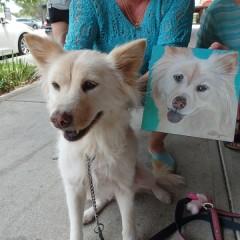 The Sanford Selfie Pet Contest Winner