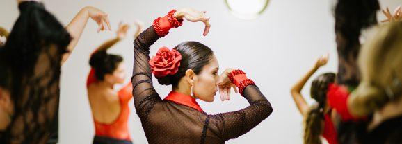 Flamenco del Sol