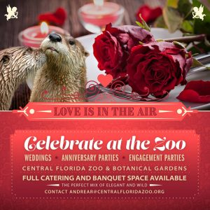 Valentines at the zoo 2017