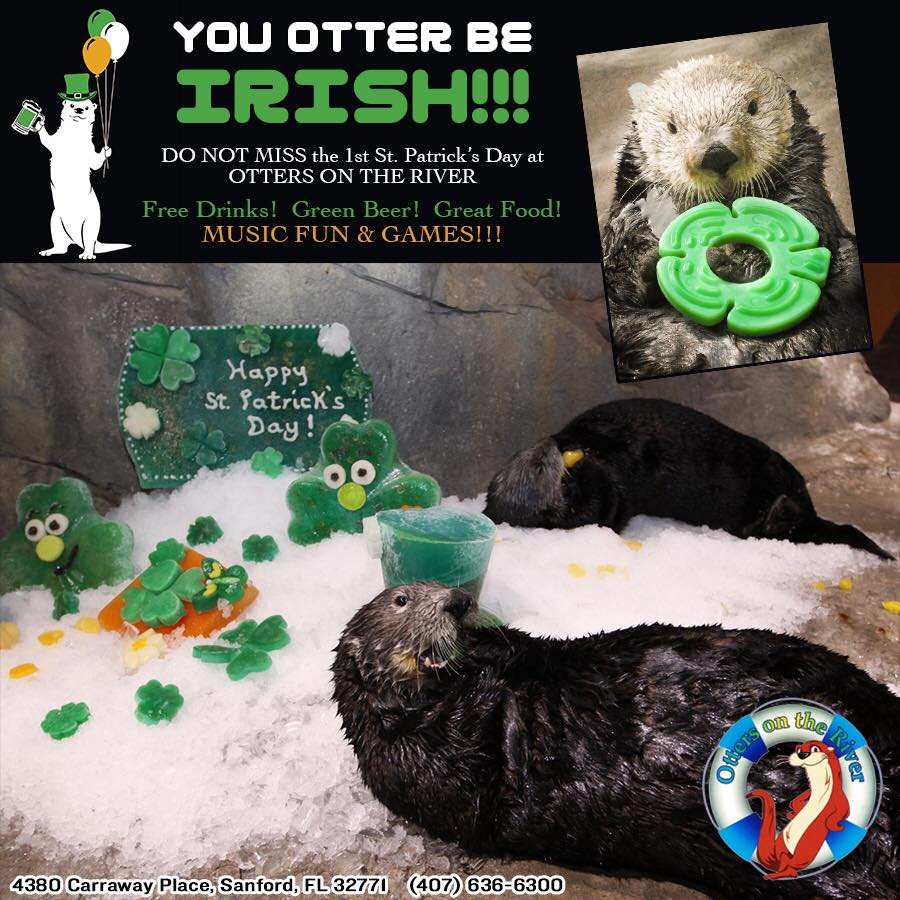 st. patricks day otters on the river 2017