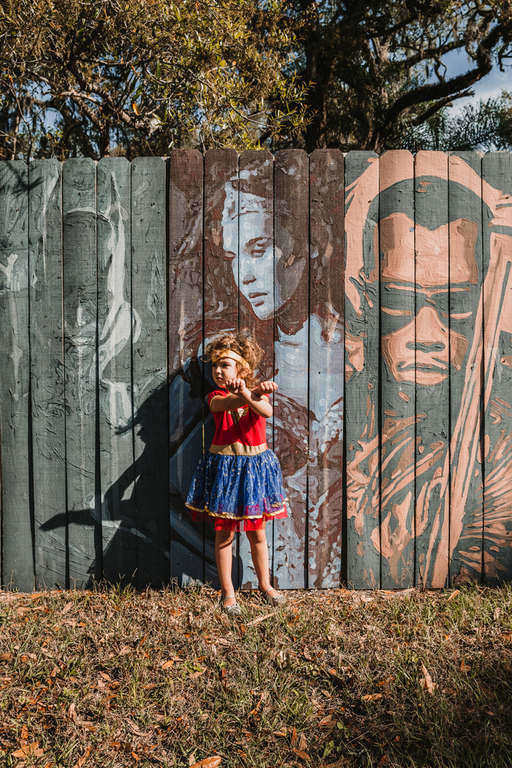 Superhero Painted Fences in Sanford FL