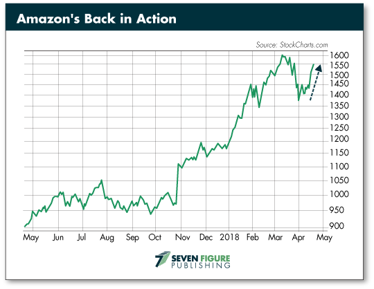 Amazons Back