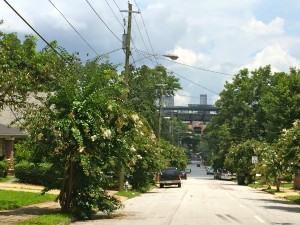 Turner Field is flanked by streets lined with crepe myrtle, such as Crew Street just south of the ballfield. A planning grant from ARC is to devise a program to uplift the area as the Braves depart. File/Credit: Donita Pendered
