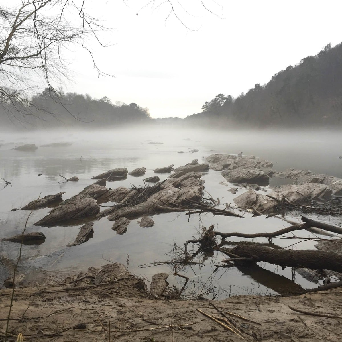 A shot of the Chattahoochee off of Whitewater Creek Trail