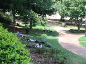 Hurt Park, napping
