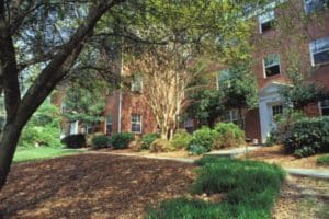 Apartments priced below $950 a month are rare in Atlanta. Oak Knoll Apartments, in the Morningside neighborhood, are priced as low as $895 a month. Residents complain on apartment.com of roach infestation, no A/C, and no maintenance. Credit: apartment.com