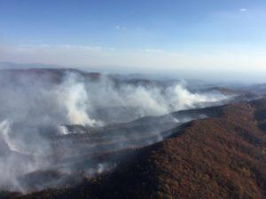 wildfire, north georgia