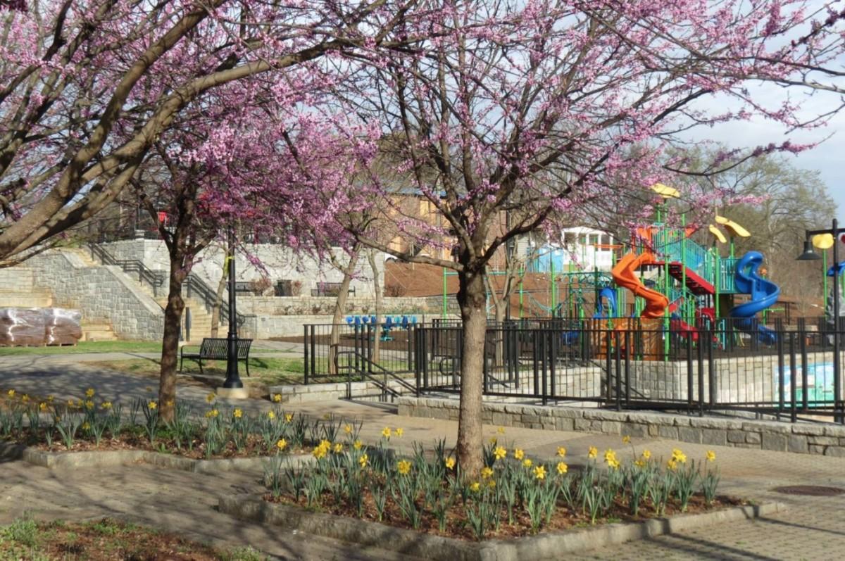 Vine City Park, ribbon cutting