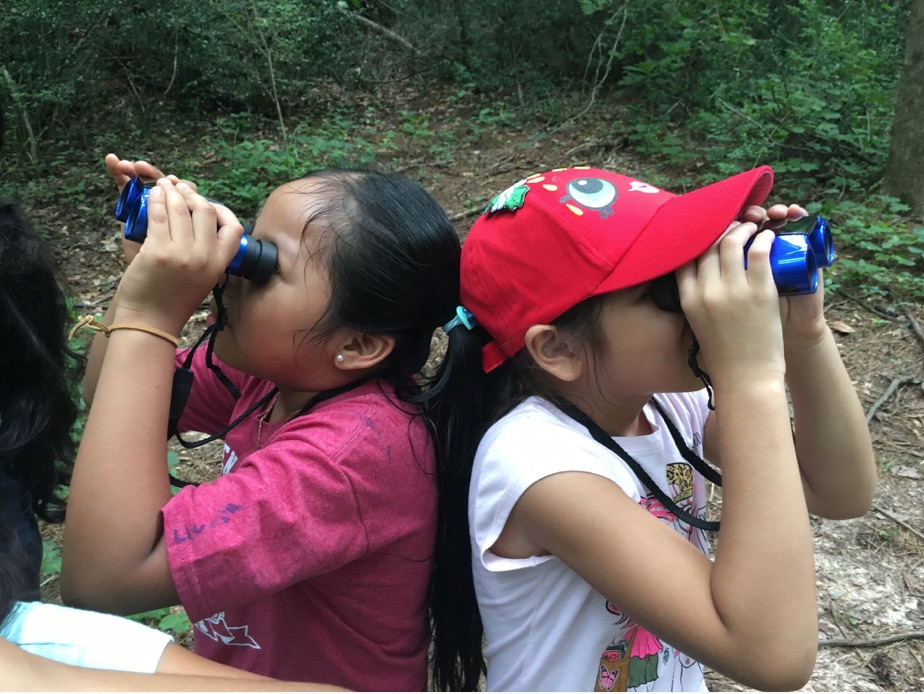 atlanta audubon, learning about birds