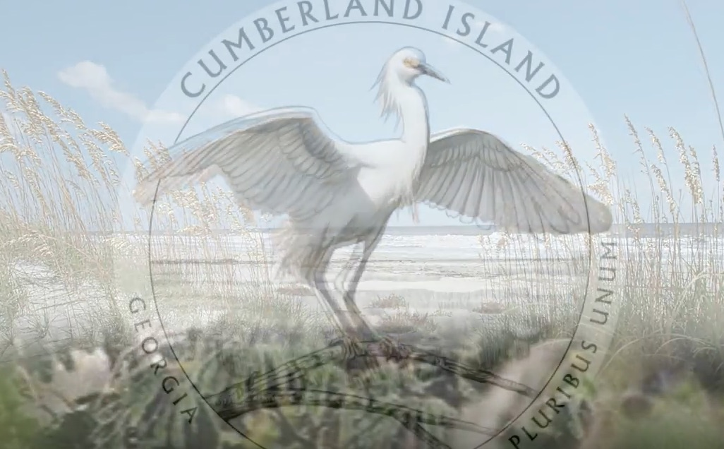 cumberland island coin, emblazoned