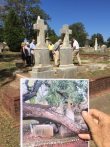 oakland cemetery, fallen tree removed