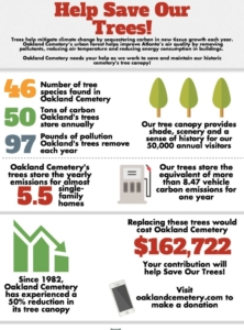 oakland cemetery, tree preservation campaign