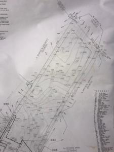 tree map, blackland