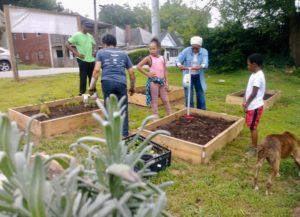 Gil Frank, community garden