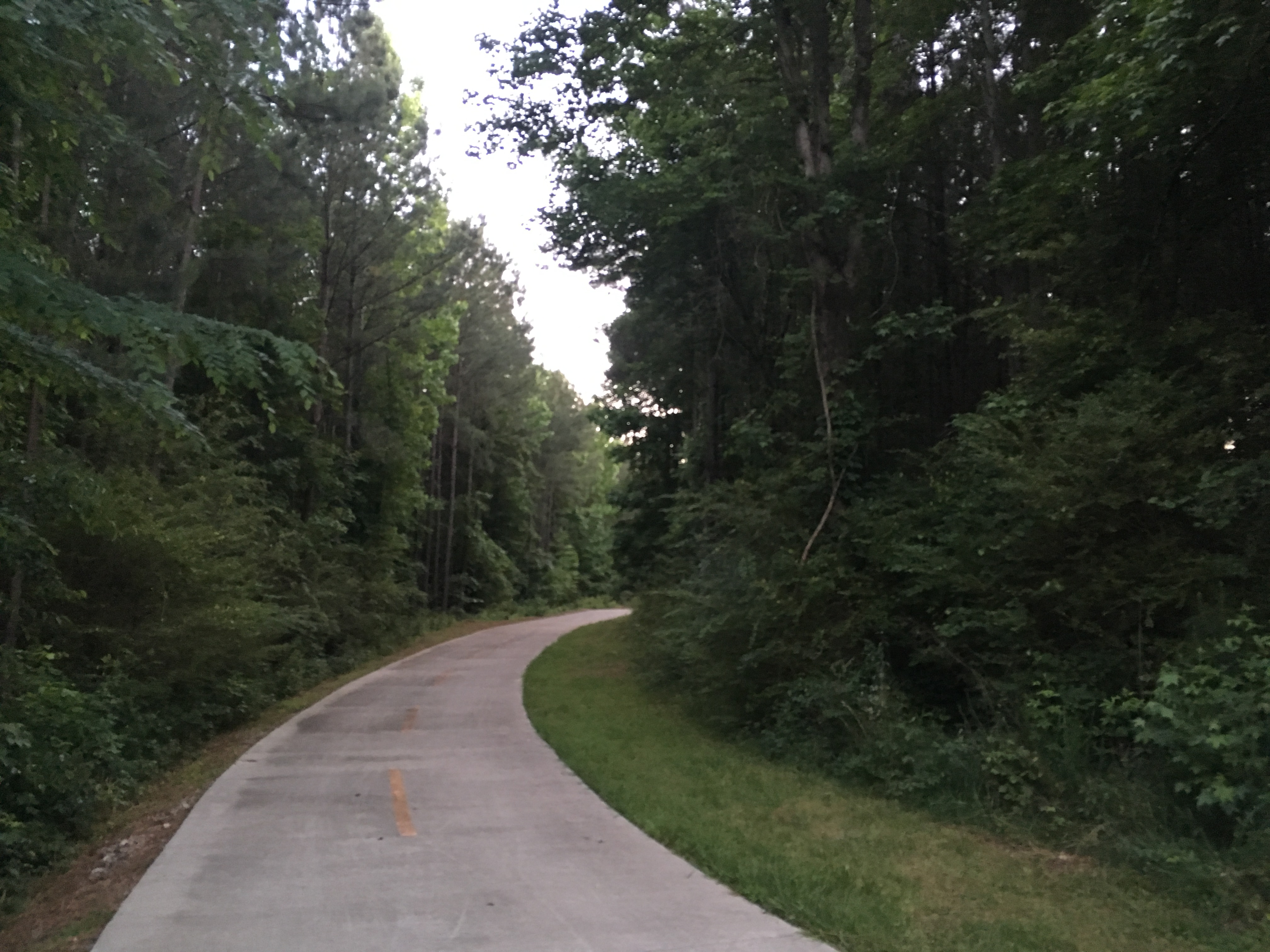 The Intrenchment Creek Trailhead is mainly wooded and quiet — some would rather see a park with more amenities, if the county will pay for them. Credit: Maggie Lee