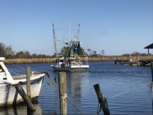 sea level, apalachicola, fishing boat
