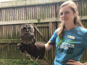 Chattahoochee Nature Center, owl