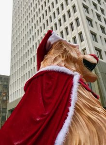 Golden retriever dog santa float at Christmas parade