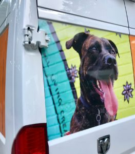 A van with a photo of a dog on it