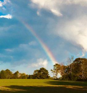 farm, rainbow