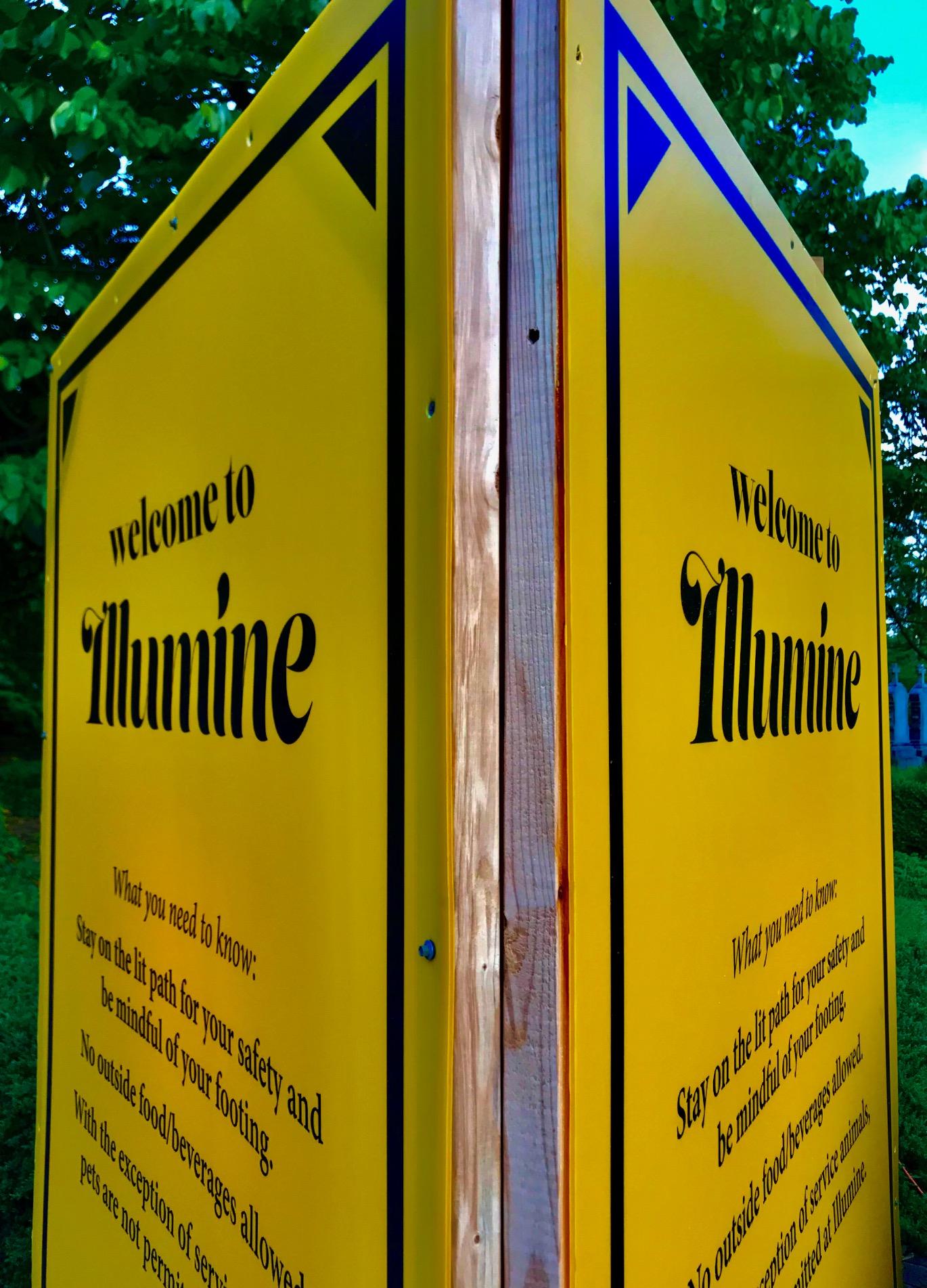 Illumine_02