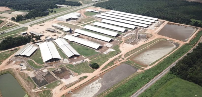 Leatherback Farms, aerial view