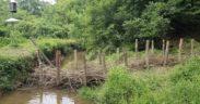 beaver dam, blue heron nature preserve