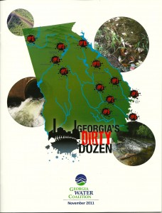 Georgia's Dirty Dozen