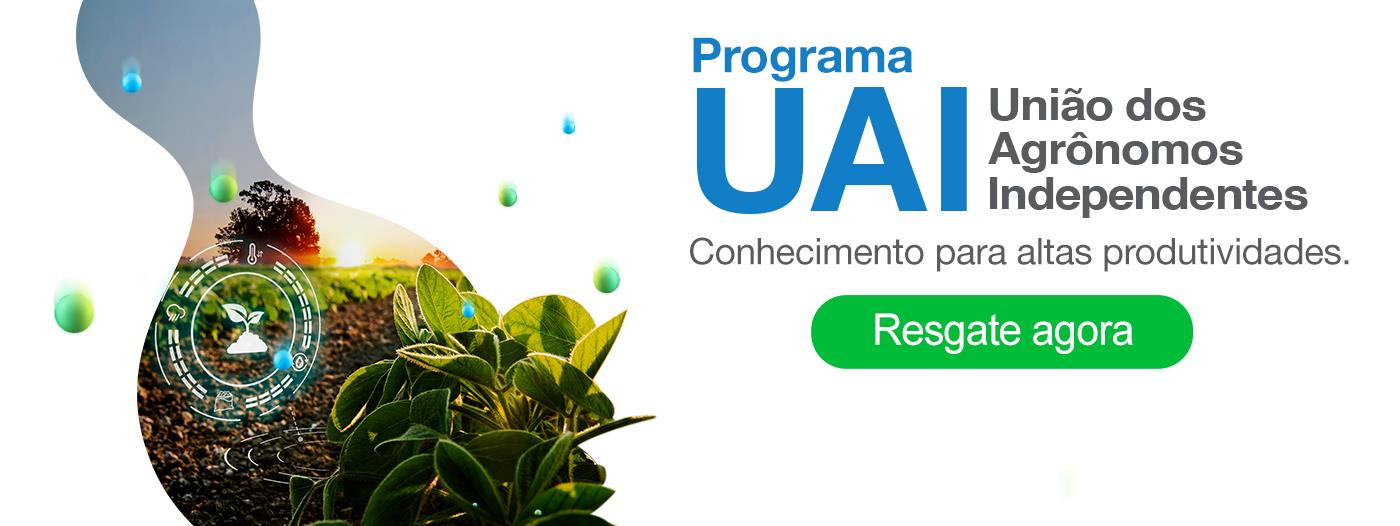 BAnner_Programa UAI