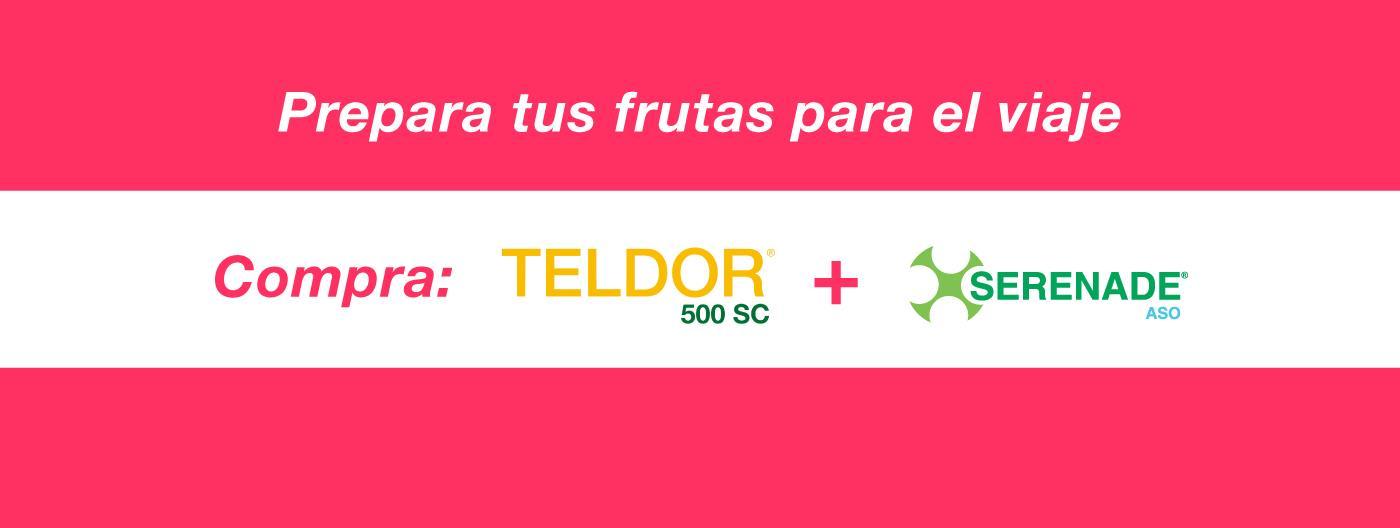 Teldor + Serenade (1)