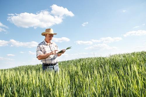 Resultado de imagem para produtor rural