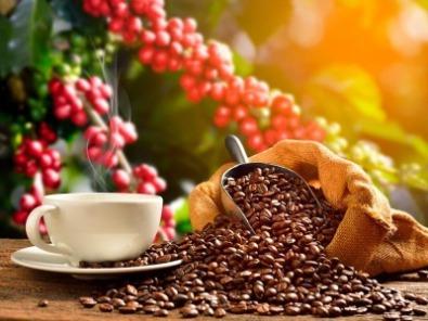 Café. Foto: Shutterstock.