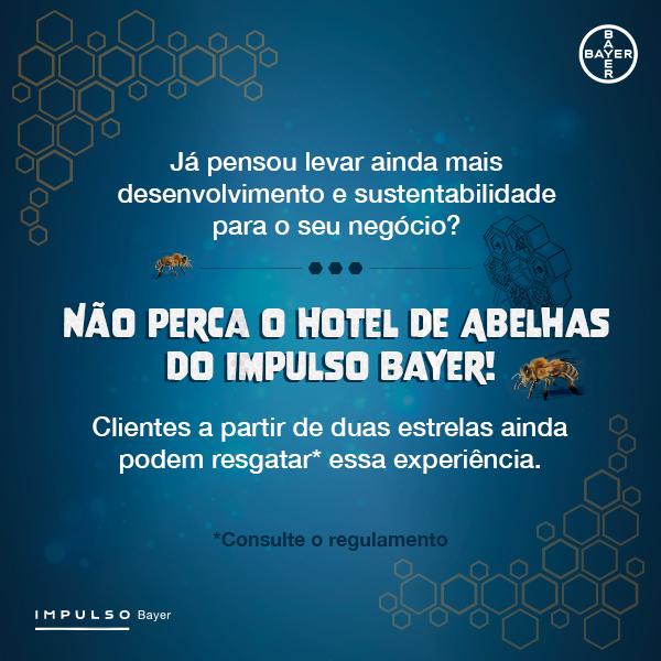 Hotel de Abelhas-Impulso Bayer 3
