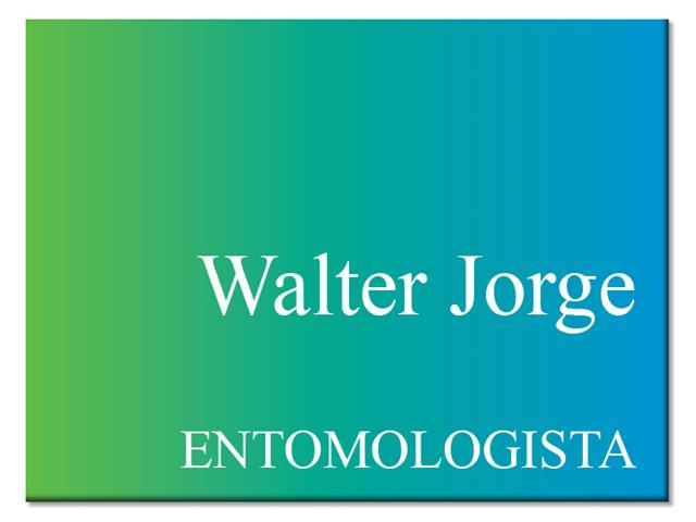 Agroespecialista - Walter Jorge