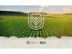 Assessoria de Inteligência Agronômica