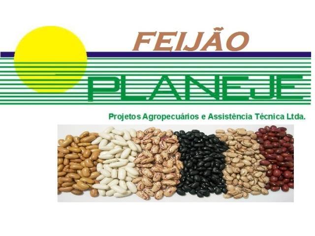 Assistência Agronômica - Planeje Consultoria - 1