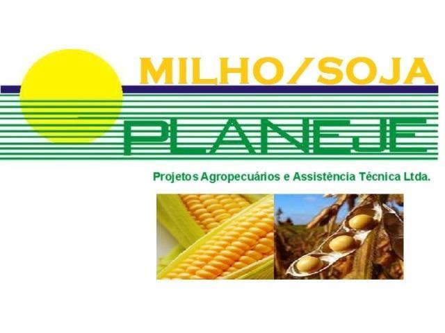 Assistência Agronômica - Planeje Consultoria - 2