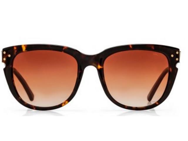 Óculos de Sol Colcci Eyewear Bordo Brilho - 1
