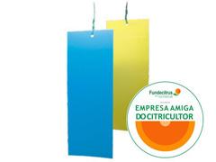 Biotrap Placas Adesivas Amarela (Pacote c/ 10 unidades) - 1