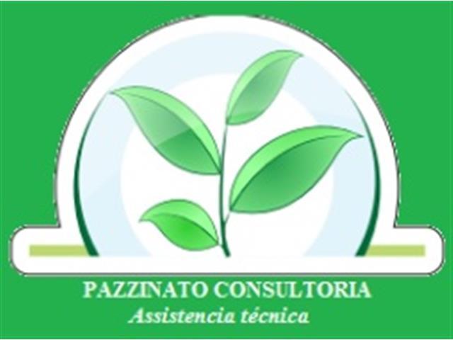 Consultoria Agronômica em Soja - Pazzinato