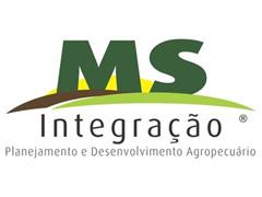 Consultoria Agronômica em Milho Safrinha - MS Integração