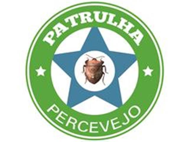 Patrulha Percevejo Milho - Técnica Rural