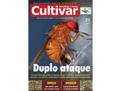 Revista Cultivar Hortaliças e Frutas - 1