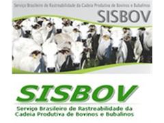 Auditoria para Certificação SISBOV - Genesis