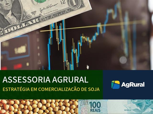 Assessoria em Comercialização da Soja - AgRural