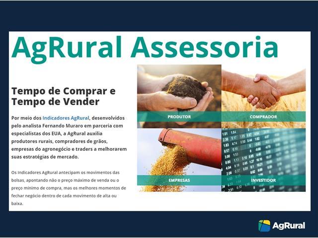 Assessoria em Comercialização da Soja - AgRural - 1